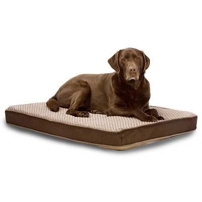 "Carpenter Co. ""Sue"" Cooling Pet Bed I009623b"