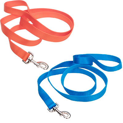 "Coastal® Single-Ply Nylon Dog Leash 1"" x 4' 278115b"