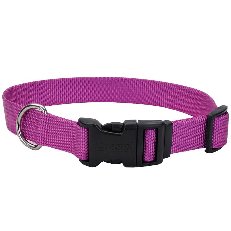 "Coastal Adjustable Dog Collar with Plastic Buckle Orchid 3/8"" x 8""-12""  330116"