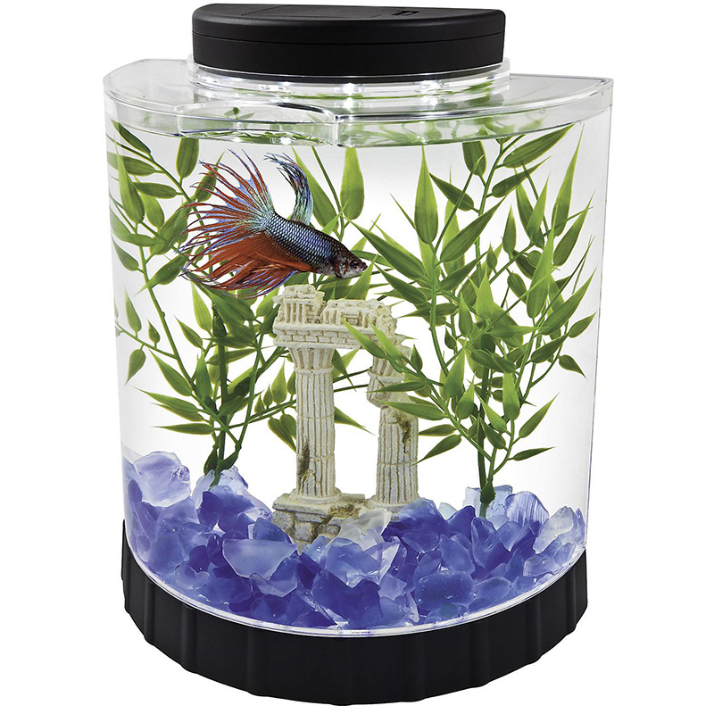 Tetra Betta Half Moon LED Kit 1.1 gal I001934
