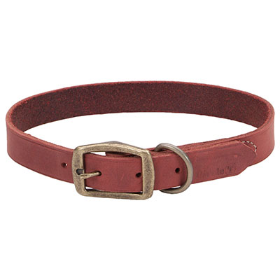 "Coastal® Circle T® Rustic Leather Town Dog Collar Brick Red 1"" I006524b"