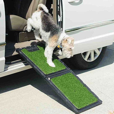 Gen7Pets™ The Natural-Step™ Mini Ramp I009513