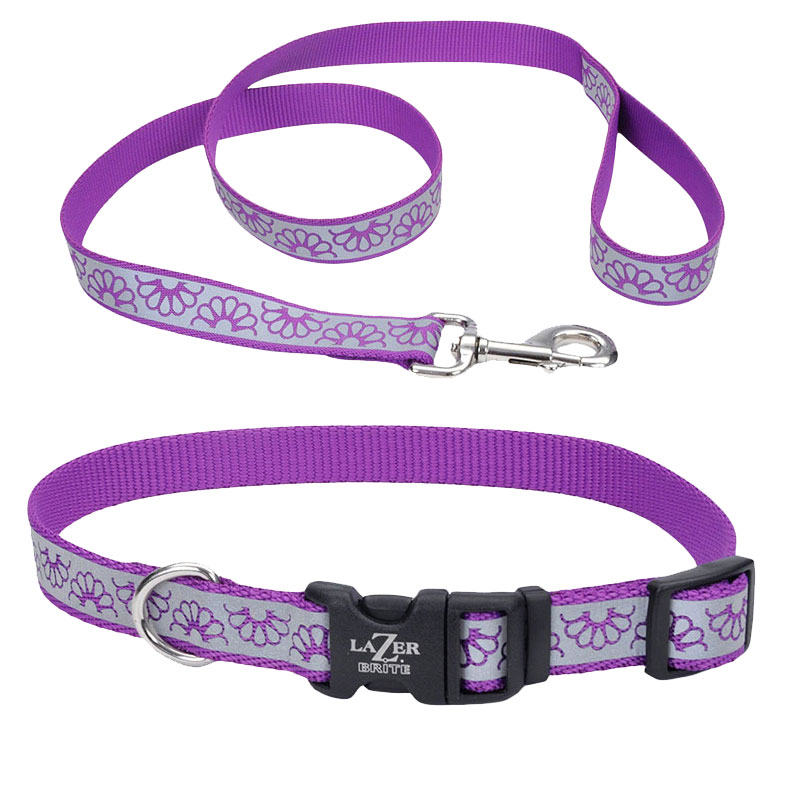 Coastal® Lazer Brite® Purple Dasiy Reflective Collar I010791b