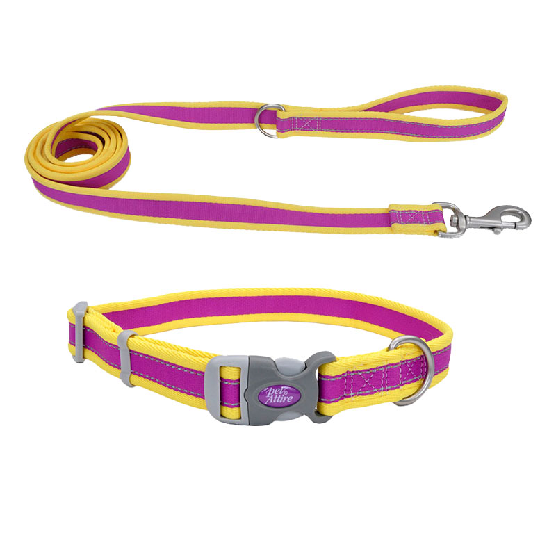 Coastal® Pet Attire® Pro Adjustable Reflective Purple with Yellow Dog Collar & Leash I010816b