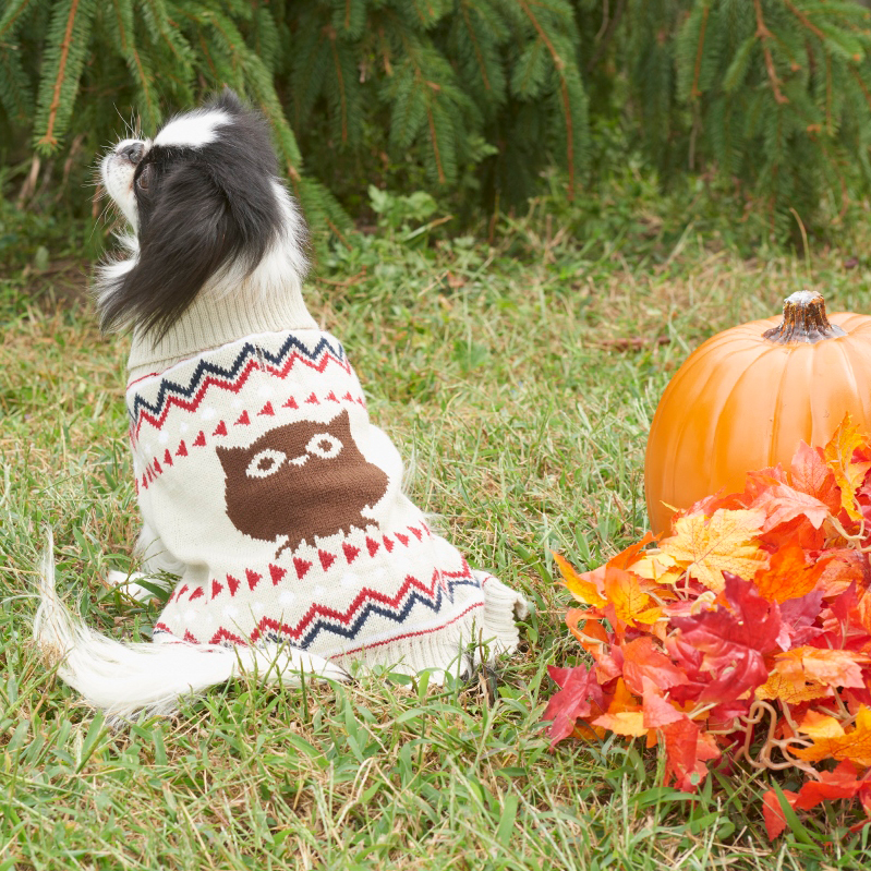 Fashion Pet™ Outdoor Dog Owl Sweater I010842b
