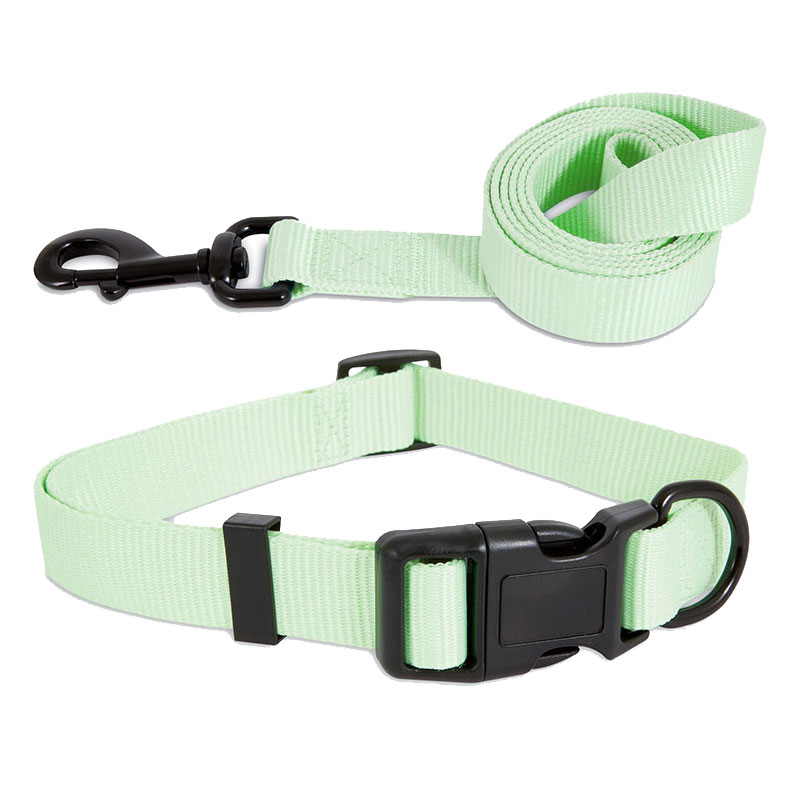 Petmate® Aspen Pet® Green Glow in the Dark Collars and Leashes I010931b