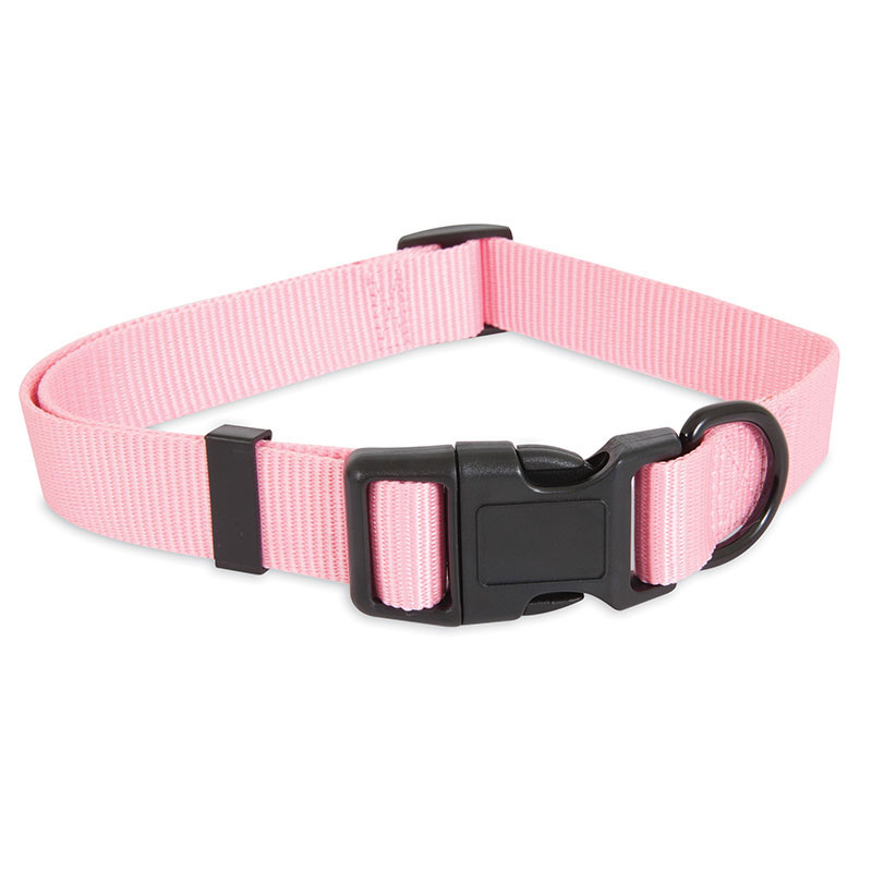 Petmate® Aspen Pet® Hot Pink Glow in the Dark Collars and Leashes I010930b