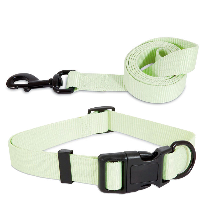 Aspen Pet® Light Green Glow in the Dark Collar and Lead I010952b