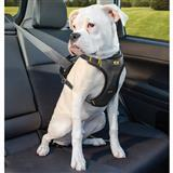Kurgo® Impact Dog Harness I011145b