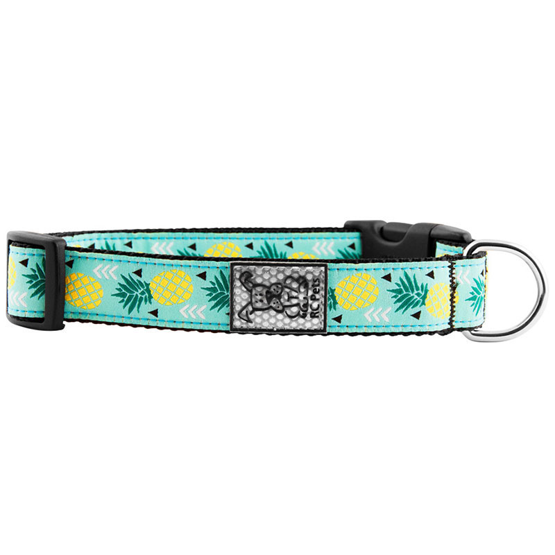 RC Pet Products Pineapple Parade Clip Collar  I011219b