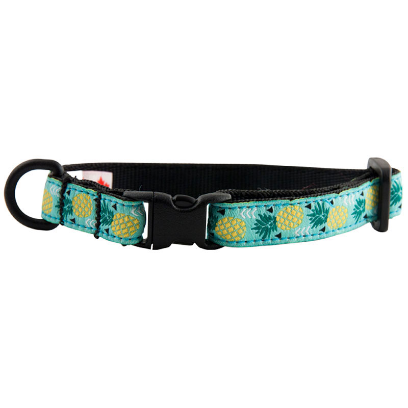 RC Pet Products Kitty Breakaway Pineapple Parade Collar I011221