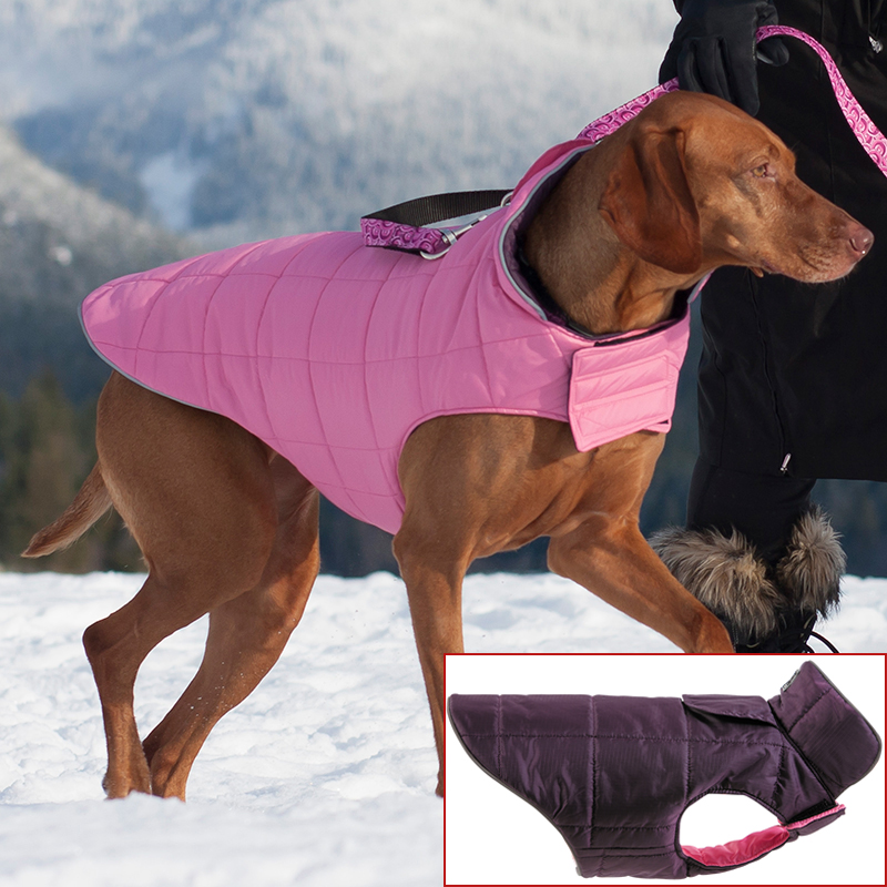 RC Pet Products Skyline Puffy Vest I011643b