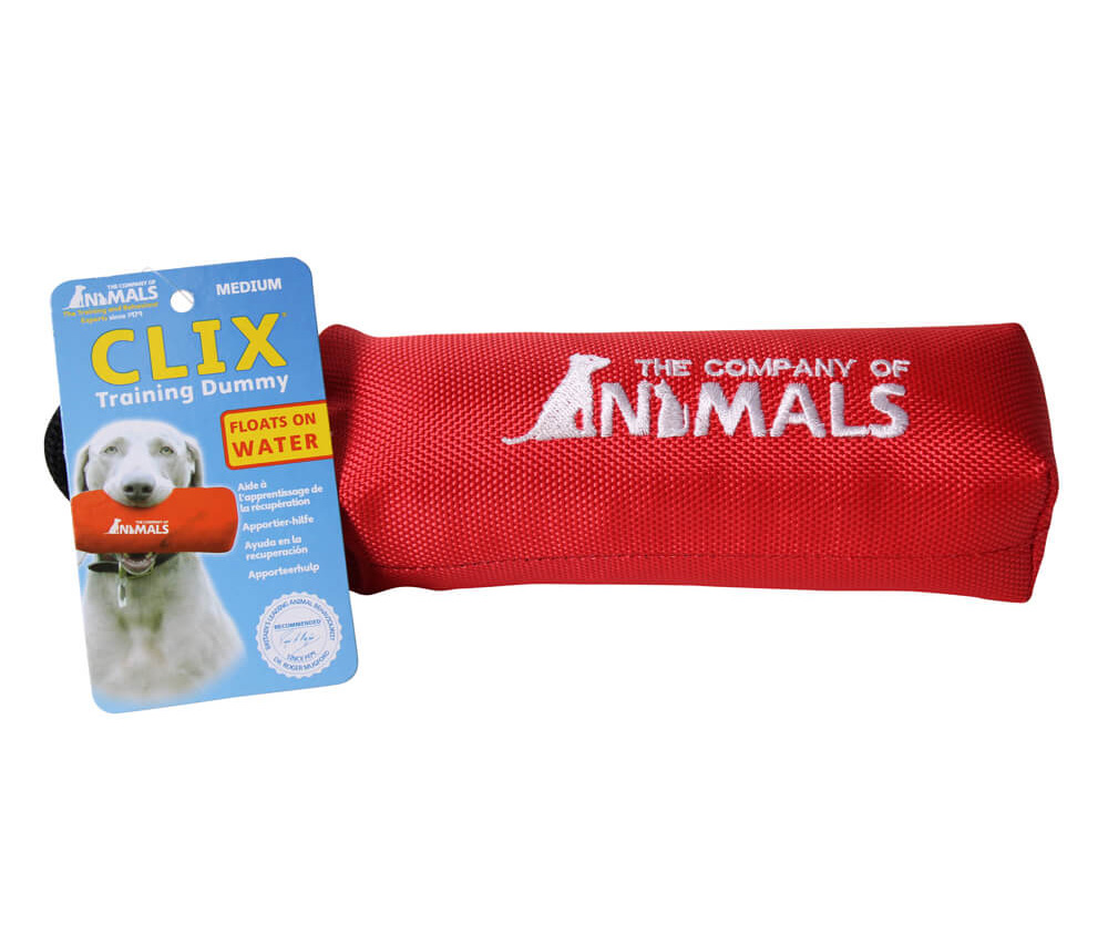 Clix Canvas Dummy Red I013379b