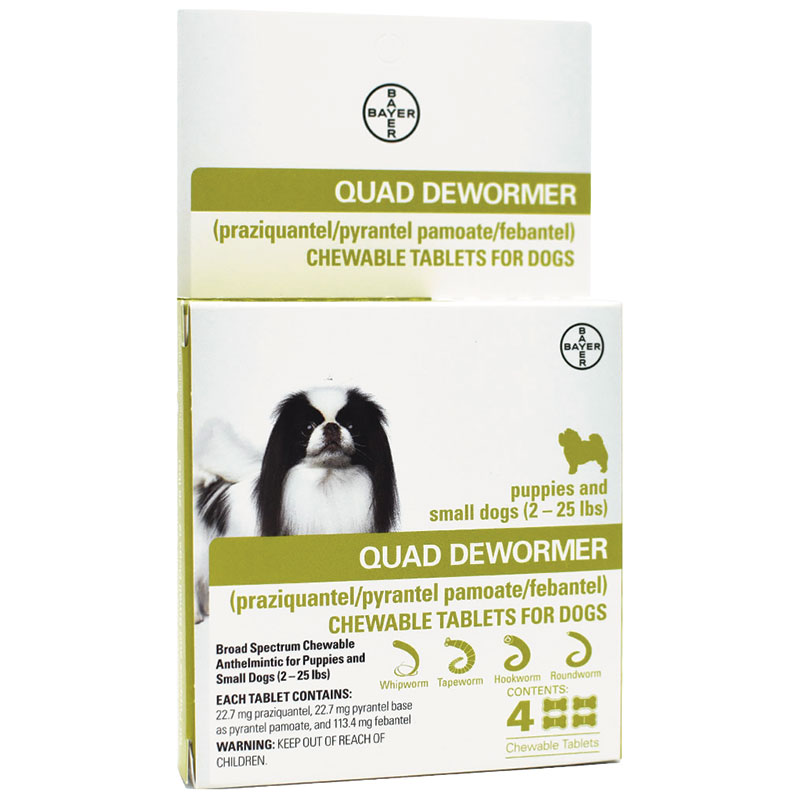 Bayer Quad Dewormer Small Dog 4Pk I013425