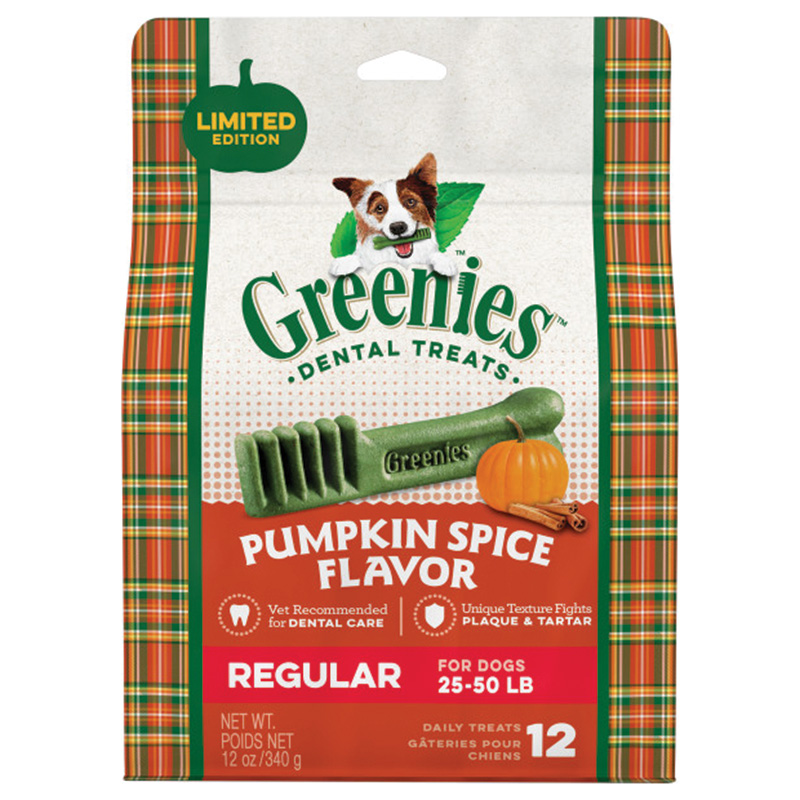 Greenies Regular Pumpkin Spice 12oz I014605
