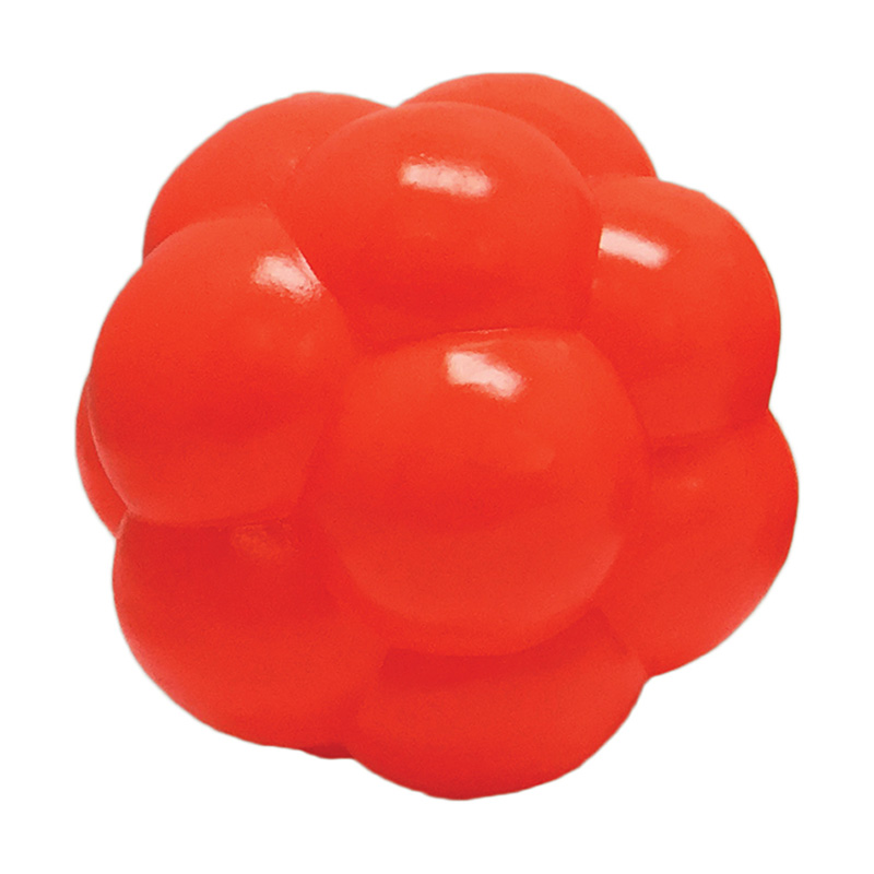 Hueter Toledo Orange Molecule Dog Toy 4 in. I014636