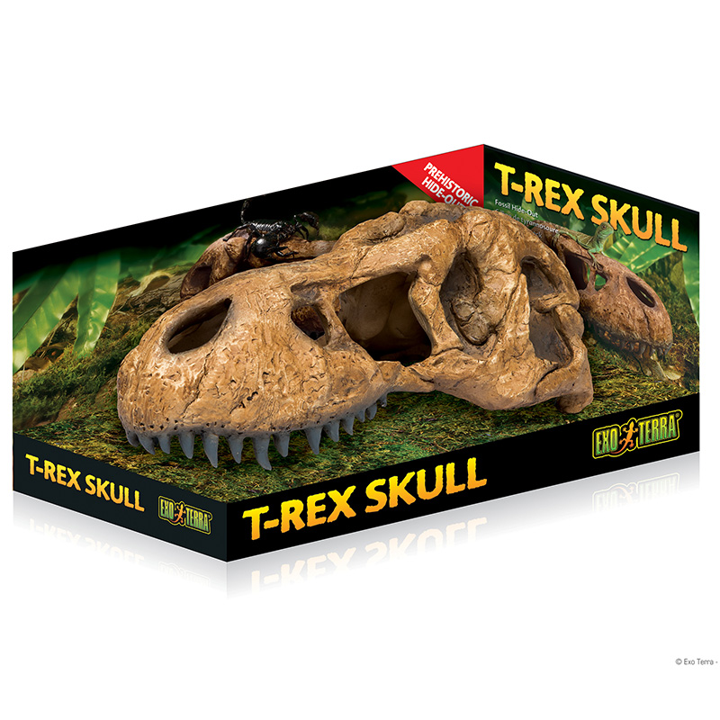 Exo Terra T-Rex Skull Hide-Out Sm I014691