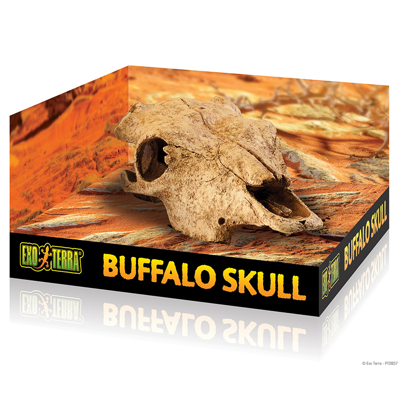 Exo Terra Buffalo Skull Hide-Out Sm  I014692
