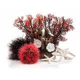 biOrb Red Forest 4 gal Kit I015355