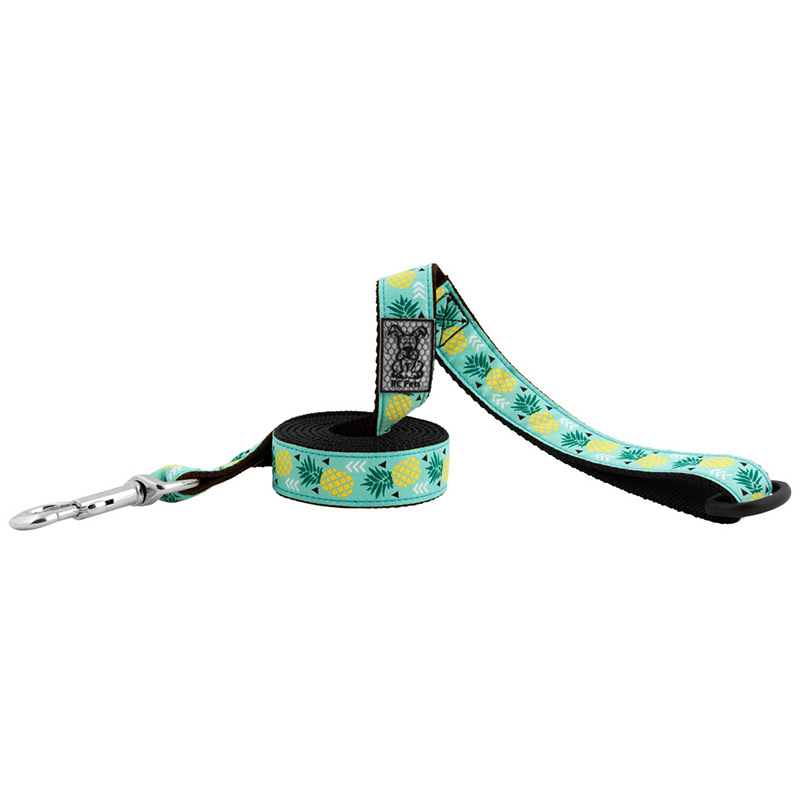 RC Pet Products Pineapple Parade Lead I015981b