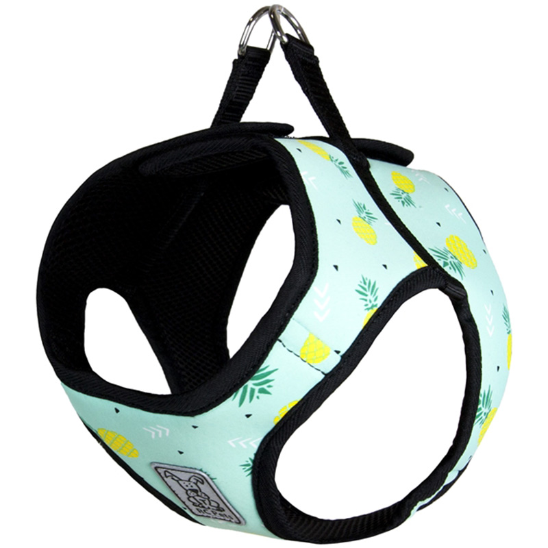 RC Pet Products Pineapple Parade Step In Cirque Harness  I015985b