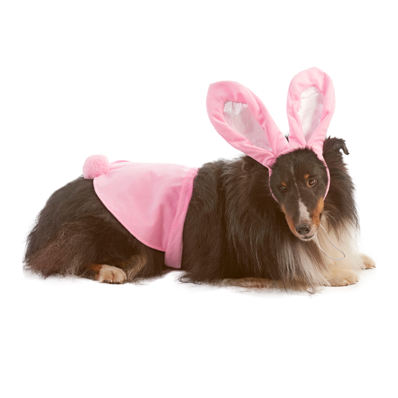 Ethical Products Lookin' Good! Bunny Costume 2 pc set  I016821b