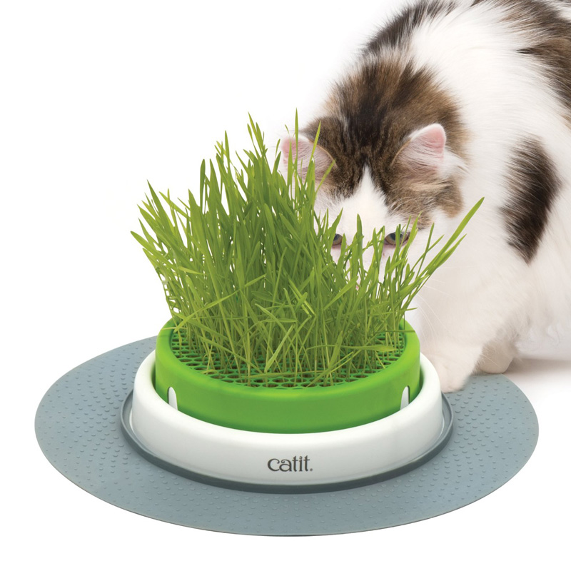 Catit Senses 2.0 Grass Planter I017685