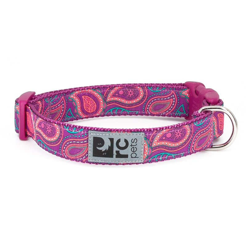 RC Pet Products Bright Paisley Clip Collar 1 in x 12-20 in I019904