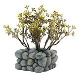 Fluval Chi Plant With Pebble Base Ornament Z01556112195