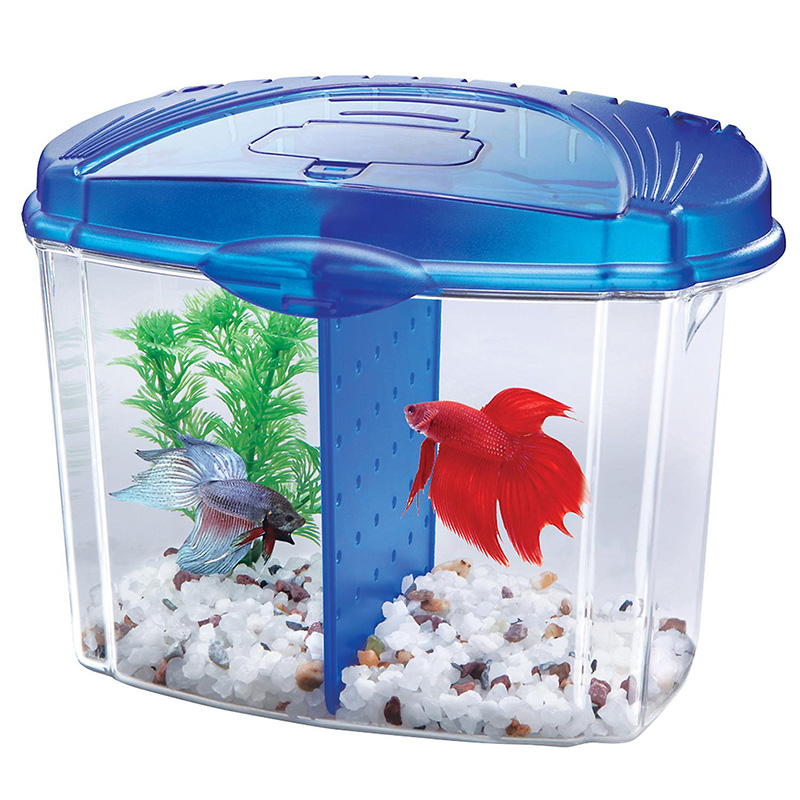 Aqueon Betta Bowl Kit Blue .5 gal Z01590501206