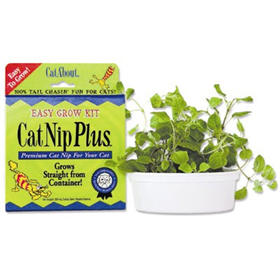 Cat Nip Plus® Premium Fresh Catnip 7245