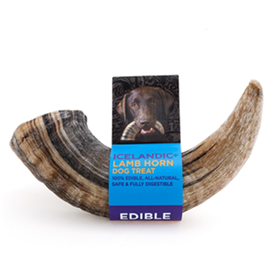 Icelandic+ Lamb Horn Dog Treat I015385b