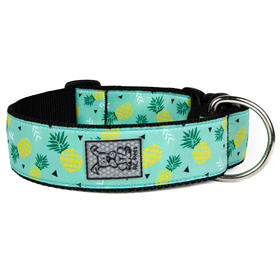 RC Pet Products Pineapple Parade Wide Clip Collar  I016781b