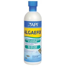 API ALGAEFIX 4 oz. Z317163030875